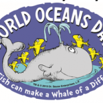 Ocean Day At Mote