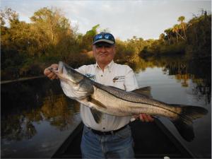 Doc Dojutrek shows off a big Myakka river snook