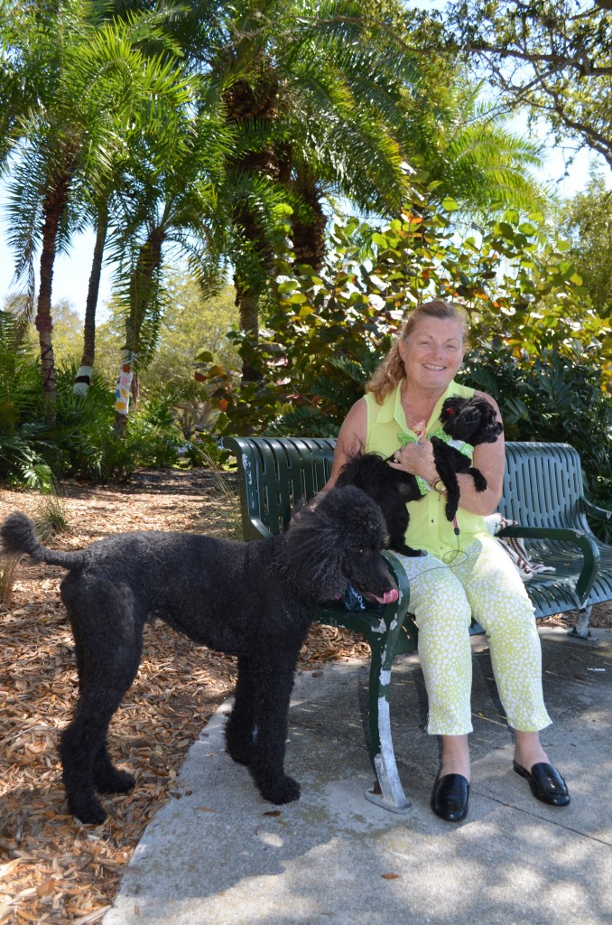 Jane with her dogs, Jacques and Zoe from Sarasota.