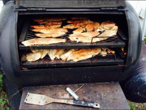 Smoking fish pic